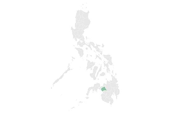 Marawi est situé dans larégion autonome musulmane de Bangsamoro sur l'île de Mindanao, dans le sud des Philippines.